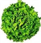 Салати и листни зеленчуци
