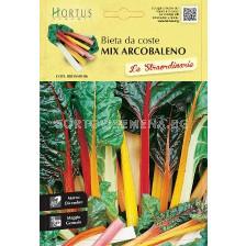 Листно цвекло микс (манголд)-Arcobaleno