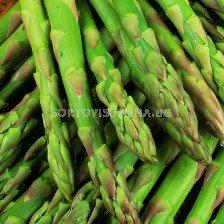 Аспержи зелени /Asparagus Gijnlim/
