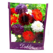 Подаръчна чанта (Далия микс) - Gift Bag (Dahlia Mix)