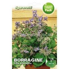 """Борагине - краставична трева, пореч """"SG"""