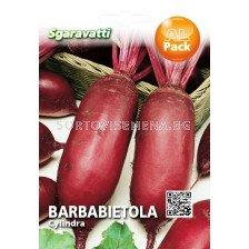 Семена Салатно цвекло Цилиндрично –Cylindra 'SG