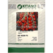 Семена домати KS 4559 (Конори) F1 - tomato KS 4559 (Konori) F1