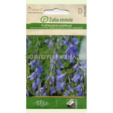 Семена Аденофора / LADY BELLS / 'SK -1 оп