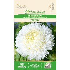 Астра божур бяла /ASTER CHINA, PAEONY WHITE/ SK - 0,5 г