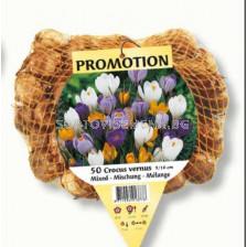 Минзухар /Crocus large flowering mixed / 1 оп -50 бр