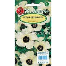 Семена Китайска роза кремава / Hibiscus trionum creamy-yellow /LG 1 оп
