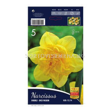 Нарцис (Narcissus) Dick Wilden 12/14