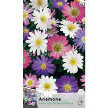 Анемоне (Anemone) Mix (Gemendg/Melange) (15 луковици)