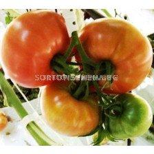 Семена Домати K4-015 F1 - Tomato K4-015 F1