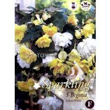 Бегонии (Begonias) Mix Sparkling (Yellow/ white)