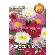 Акроклиниум - Acroclinium