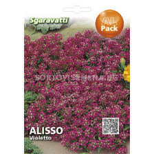 Алисум - розов`SG
