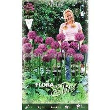 Декоративен лук Globemaster - Allium Globemaster