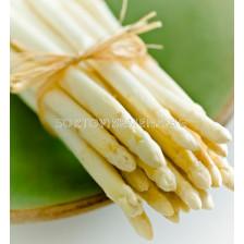 Аспержи Albus - Asparagus Albus