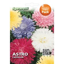 Астра (Aster) California mix `SG