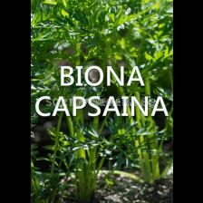 Biona Capsaina - Биона Капсаина (с репелентно действие)