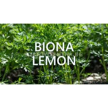 Biona Lemon – Биона Лимон - 1л