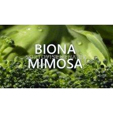 Biona Mimosa - Биона Мимоза (с фунгицидно действие)