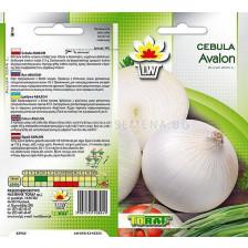 Бял лук /Cebula Avalon/TF -3 гр