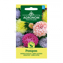 АСТРА CHINA ASTER, POMPON MIX СК
