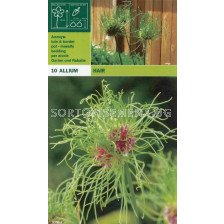 Декоративен лук (Allium Hair пакет)