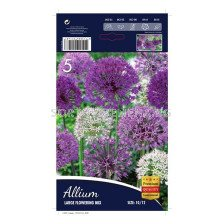 Декоративен Лук (Allium) Large Flowering Mix