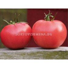 Сорт домати Афен. Аграра ООД. Сортови семена Дар.