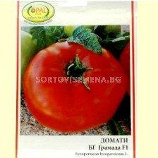 Домати БГ Грамада F1 - Tomato BG Gramada F1