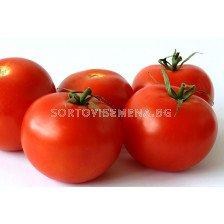 Сорт домати Султан F1. Аграра ООД. Сортови семена Варна