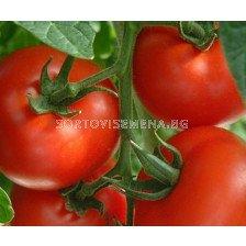 Сорт домати Запата (Сфинкс) F1