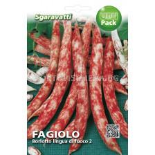 фасул Borlotto Lingua di Fuoco 2  SG - висок - beans Borlotto Lingua di Fuoco 2  SG
