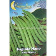 Семена фасул Италиански (зелен, кръгъл, нисък) - Beans Italian (green, round, low)
