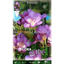 Фрезия Blue (1 оп-10 луковици)