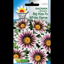 Газания - блестяща Голяма целувка