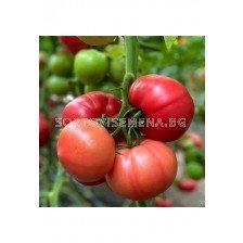 домати Густо Пинк 500 сем