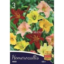 Хемерокалис Микс - Hemerocallis  Mix