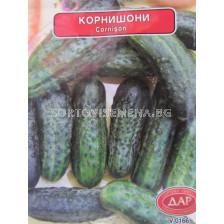 Сорт корнишони Калиопа. Аграра ООД. Сортови семена Варна.