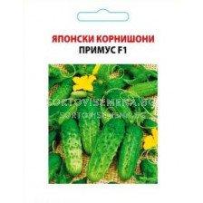Семена корнишони Примус - gherkins Prymus