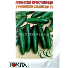 Семена краставици Тропикал Слайсър - cucumber Tropical slicer F1
