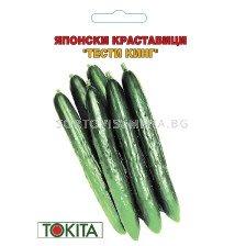 краставици Тести Кинг F1 - cucumber Tasty King F1