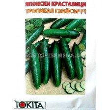 краставици Тропикал Слайсър - cucumber Tropical slicer F1