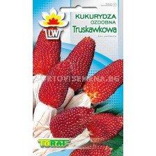 Декоративна царевица - Червена ягода