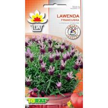 Лавандула (Lavender) - френска