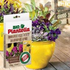 BioPlantella Лепящи листове за насекоми