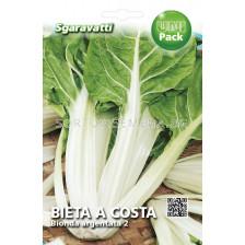 Манголд (Mangold) Bionda a Costa Argentata 2`SG