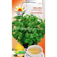 Маточина Limonella