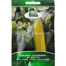 захарна царевица SF 874