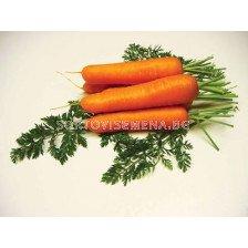моркови Натива F1