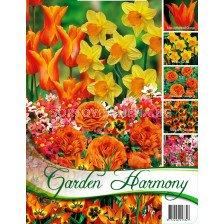 """Лалета микс """"Orange garden"""""""